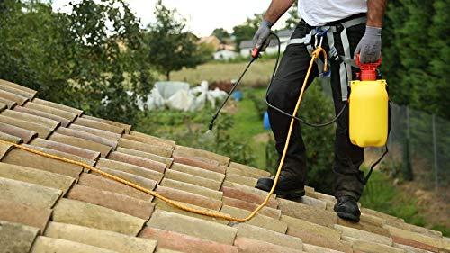 Nettoyage de toiture Haute-Garonne (31) - Prix et devis